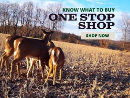 Shop Our One Stop Shop and Know What to Buy
