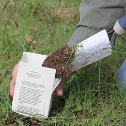 Soil Test Bag