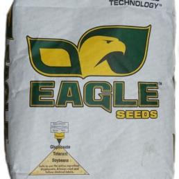 Eagle Soybean Seed
