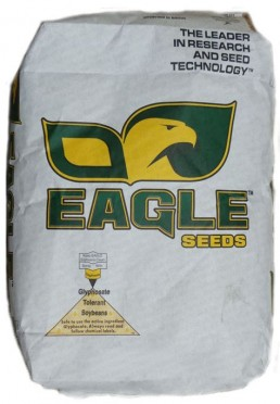 Eagle Soybean Seed